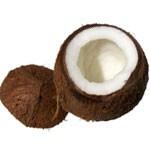 augeschnittene Kokosnuss